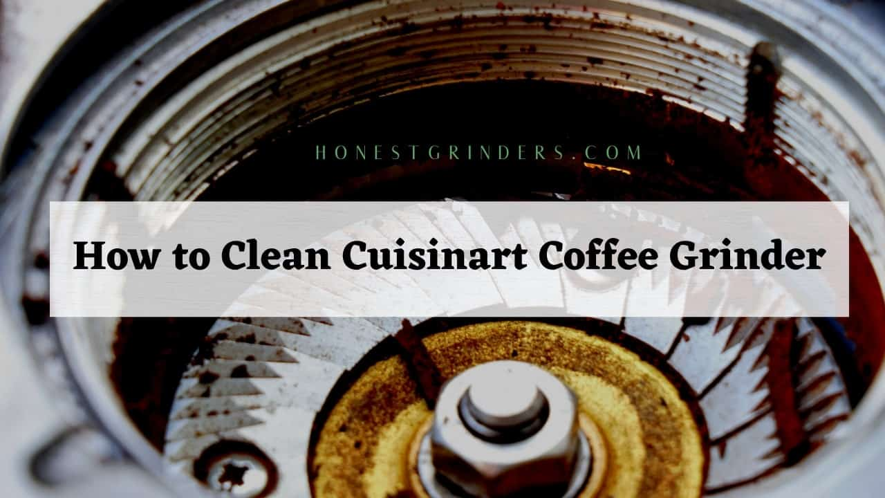 how to clean cuisinart coffee grinder